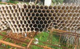 L'innovation durable pour un revêtement de sol chez Castorama