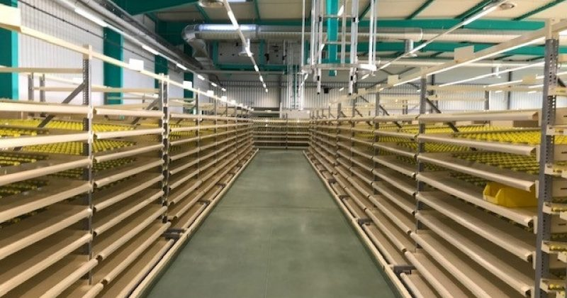Dallage industriel de teinte verte pour la CERP de Metz